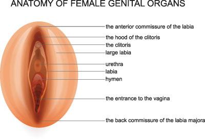 Lost-Penis-Syndrom - Ursachen, Symptome & Behandlung