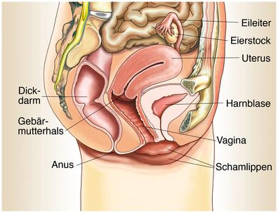 Vaginakrebs - Symptome, Ursachen, Diagnose -